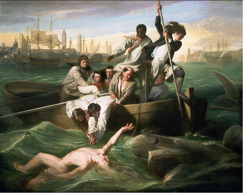 Copyright National Gallery of Art, Washington, D.C. (http://www.nga.gov/feature/watson/watsonhome.shtm)